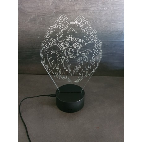 Veilleuse LED Spitz