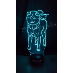 Veilleuse LED chien Akita