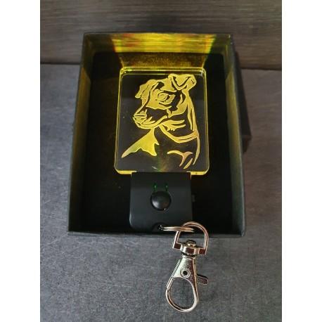 porte-clés LED lumineux jack russel