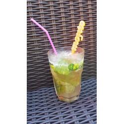 Touilleurs à cocktails MOJITO